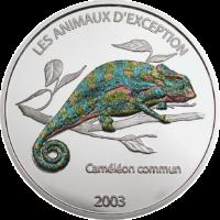 Chameleon – Color