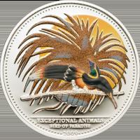CMA-Bird of Paradise
