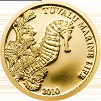 Tuvalu Marine Life – Seahorse