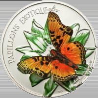 Butterflies in 3D – 2011