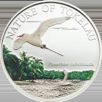 Tropicbird – silver