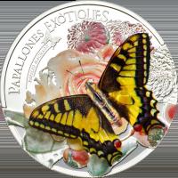 Butterflies in 3D – 2013