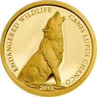 Endangered Wildlife – Canis lupus chanco