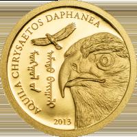 Golden Eagle – Aquila chrysaetos daphanea