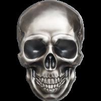 Skull No1