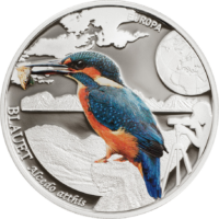 Kingfisher – World of Birds