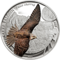 Saker Falcon – World of Birds