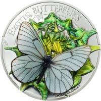 Butterflies in 3D – 2017