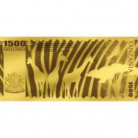 Lion – Tanzania