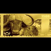 Buffalo – Tanzania