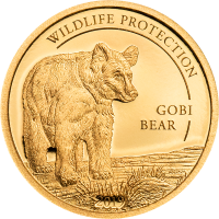 Golden Gobi Bear