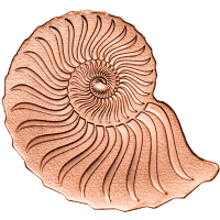 Golden Ammonite