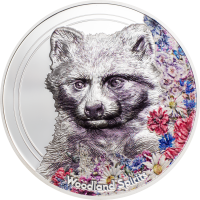 Woodland Spirits – Raccoon Dog