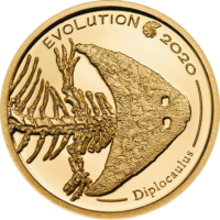 Golden Diplocaulus – Evolution of Life