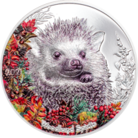 Woodland Spirits – Hedgehog